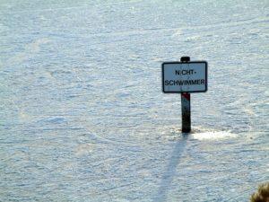 Gastbeitrag Handelsblatt: Deutschland muss wieder schwimmen lernen